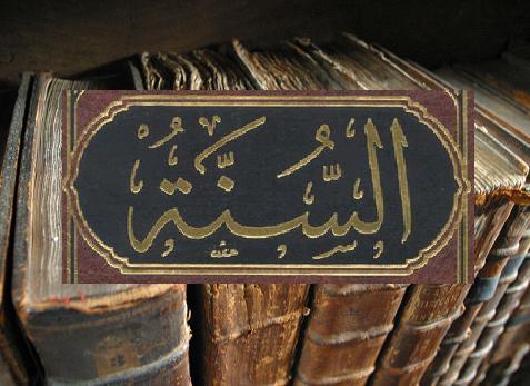 Sê Paciente na Sunnah até encontrares o teu Senhor…