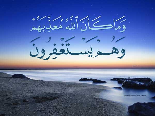 O Conselho de Al-Allamah Ubaid Al-Jaabiri حفظه الله (que Allah o preserve)