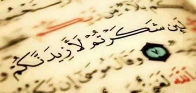 Ser grato (a Allah) por comida é um grande acto de adoração…