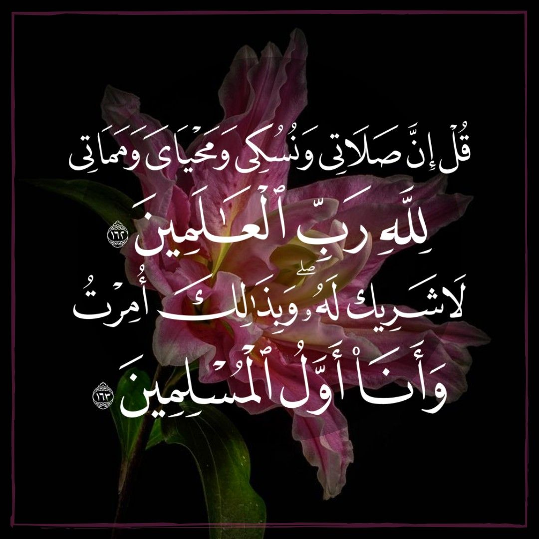 """Áudio: """"Condições da Oferta Sacrificial (Udhiyah)"""""""