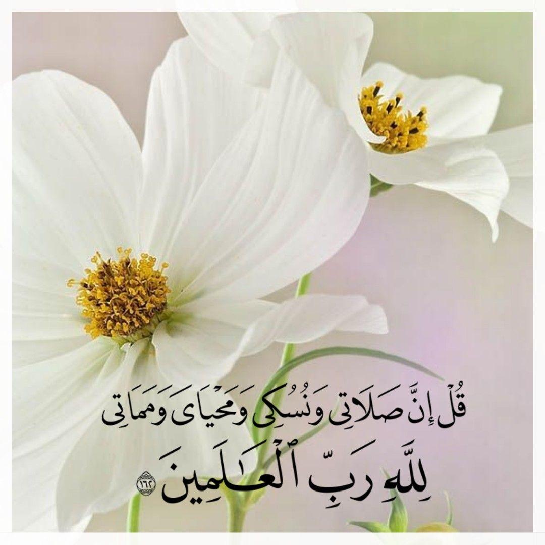 Para aqueles que pretendem oferecer um sacrifício (Udhiyah)…
