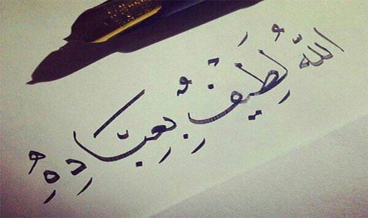 Dos maiores favores de Allah…