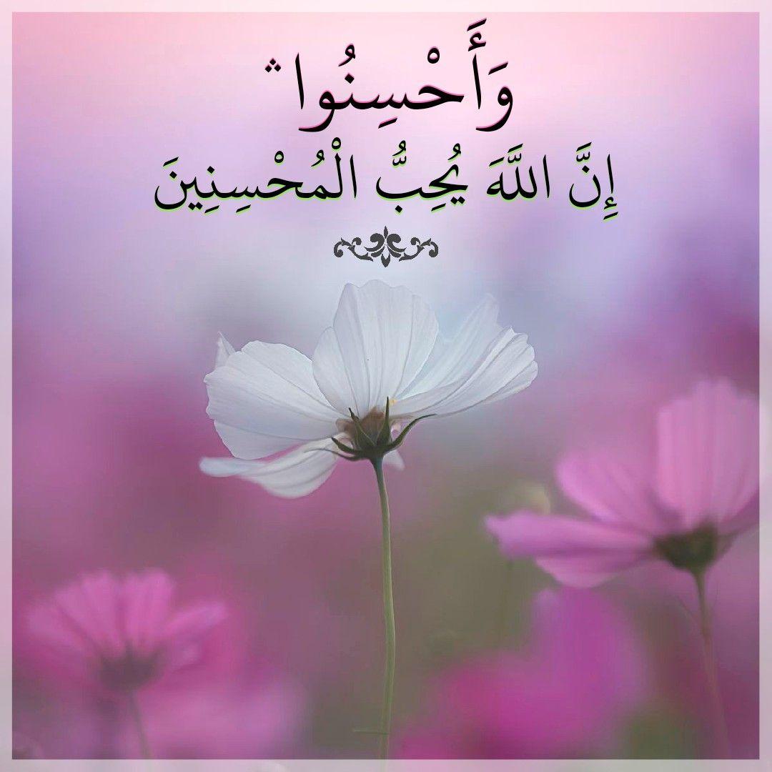 Dos laços mais fortes de Al-Imaan: 'O amor por Allah e o ódio por Allah'