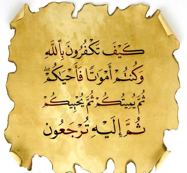 Como é que vocês desacreditam em Allah?